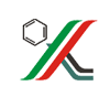 Татнефтехиминвест-холдинг (ТНХИ)